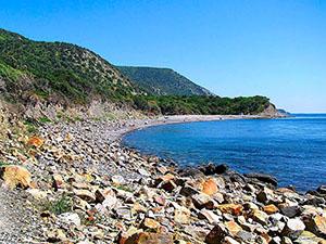 отдых на черном море в сукко мыс ежик